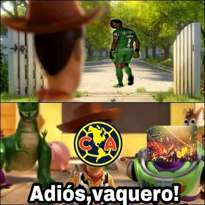 memes de marchesín